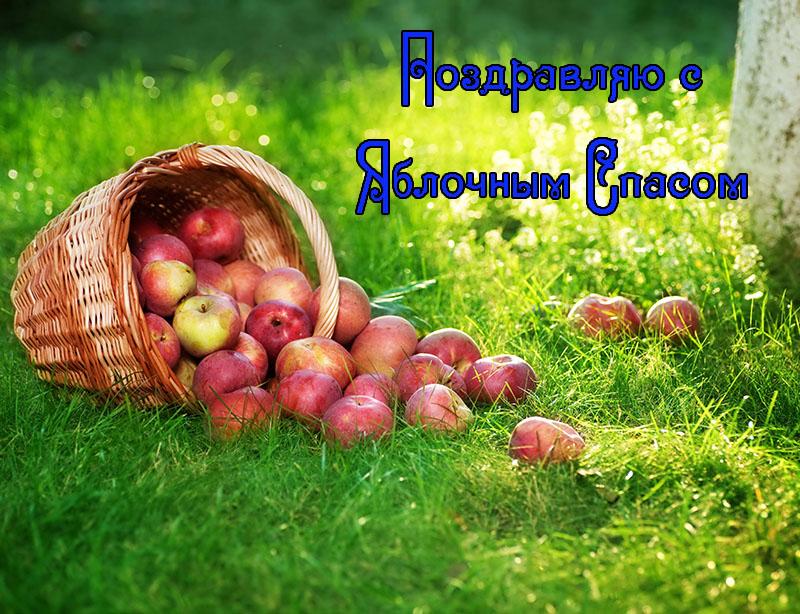 Поздравление с яблочным спасом для любимого 9