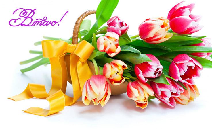 привітання: Привітання з днем народження подрузі