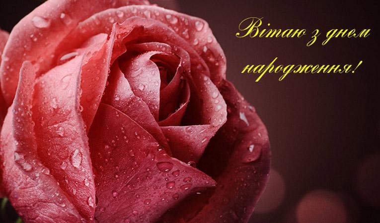 Скачать з днем народження картинки українською
